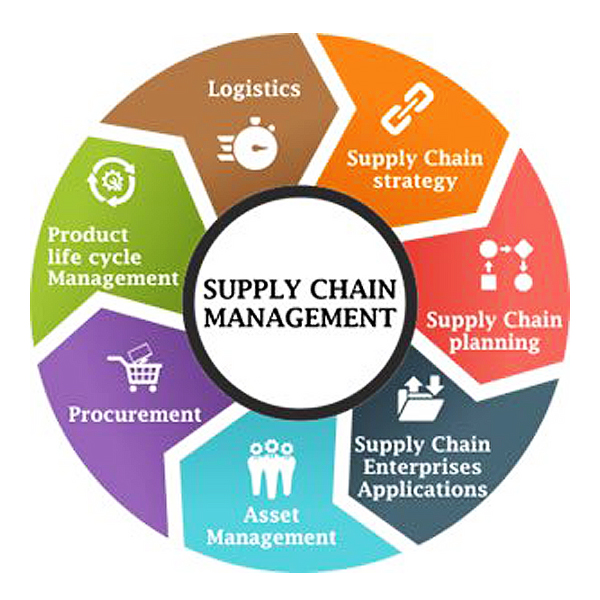 strategic supply chain management course Operations and supply chain management option the operations and supply chain management plays a critical role in the success of an organizationthe need to develop operations expertise has become more essential and.